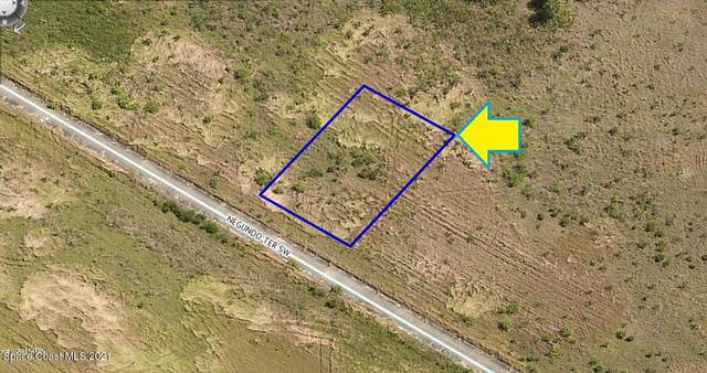 935 Negundo Terrace SW, Palm Bay, FL 32908 (MLS #916085) :: Keller Williams Realty Brevard