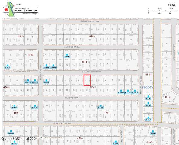 450 Gallagher Street SW, Palm Bay, FL 32908 (MLS #916250) :: Blue Marlin Real Estate