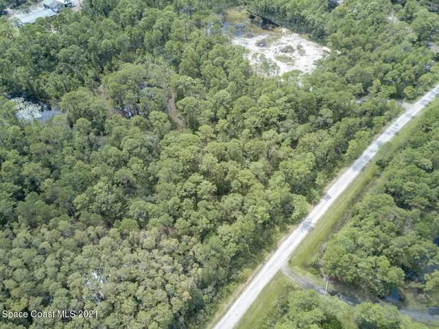 10431 Epiphyte Road, Mims, FL 32754 (MLS #916299) :: Keller Williams Realty Brevard