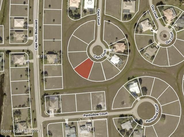 17449 Cayo Lane, Punta Gorda, FL 33955 (MLS #916471) :: Engel & Voelkers Melbourne Central