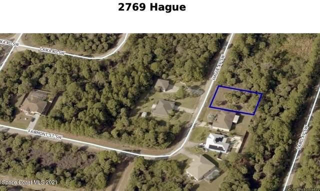 2769 Hague Avenue SW, Palm Bay, FL 32908 (MLS #916570) :: Dalton Wade Real Estate Group