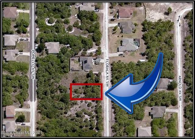 3374 Florala Avenue SW, Palm Bay, FL 32908 (MLS #916609) :: Dalton Wade Real Estate Group