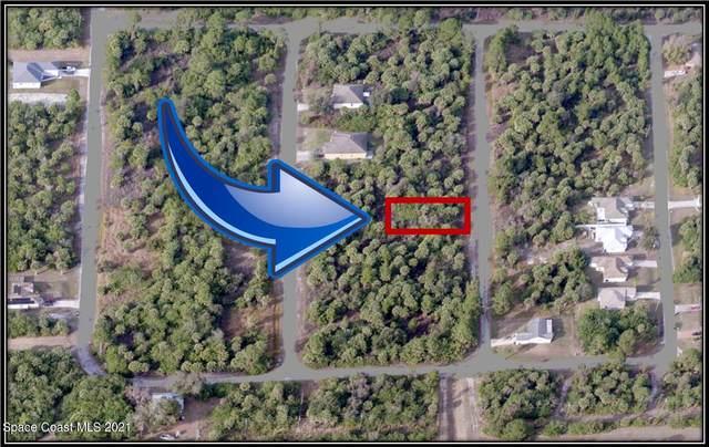 3260 Hewitt Avenue SE, Palm Bay, FL 32909 (MLS #916617) :: Dalton Wade Real Estate Group