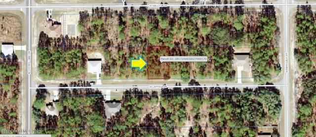 3705 W Lappula Lane, Citrus Springs, FL 34433 (MLS #916664) :: Vacasa Real Estate