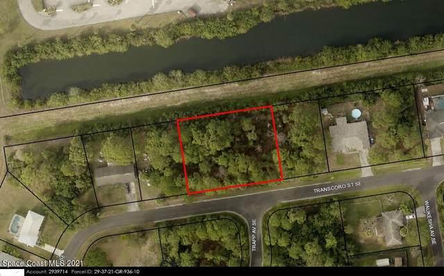 1411 Transcoro Street SE, Palm Bay, FL 32909 (MLS #916792) :: Dalton Wade Real Estate Group