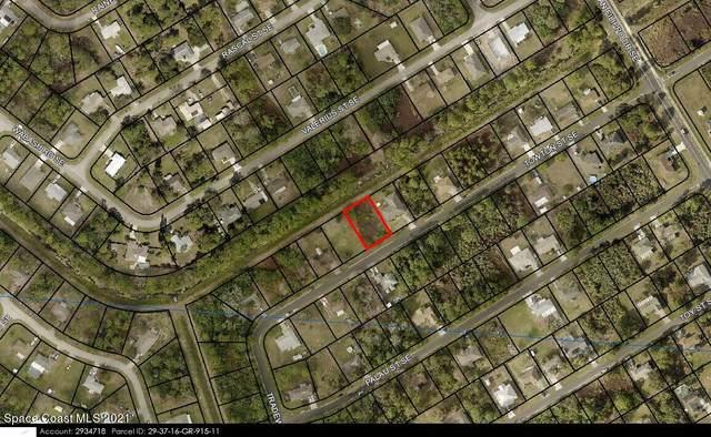 1335 Towton Street SE, Palm Bay, FL 32909 (MLS #916796) :: Dalton Wade Real Estate Group