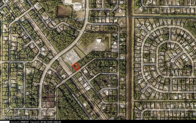 195 Saybrook Road SW, Palm Bay, FL 32908 (MLS #916797) :: Armel Real Estate