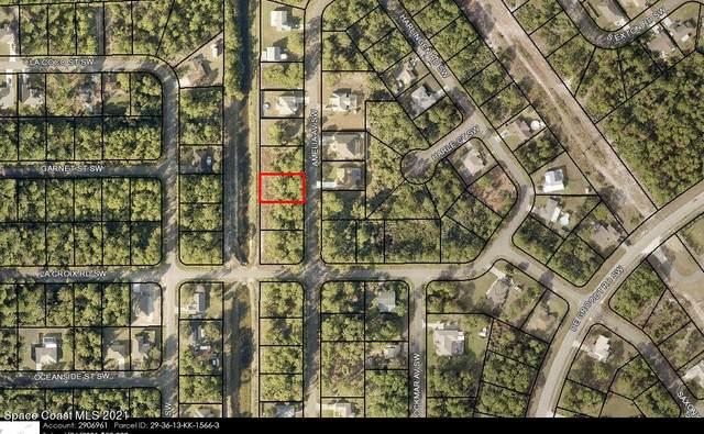 1282 Amelia Avenue SW, Palm Bay, FL 32908 (MLS #916798) :: Armel Real Estate