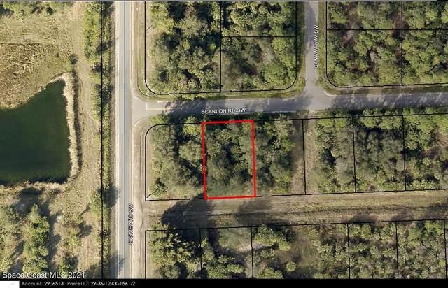 590 Scanlon Road SW, Palm Bay, FL 32908 (MLS #916801) :: Armel Real Estate