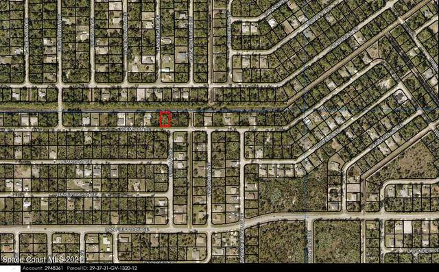 483 Tobias Street SE, Palm Bay, FL 32909 (MLS #916804) :: Armel Real Estate