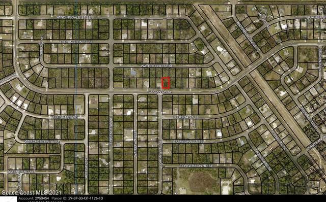 2057 Cogan Drive SE, Palm Bay, FL 32909 (MLS #916809) :: Keller Williams Realty Brevard