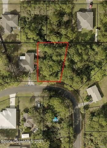 1121 Yager Road SE, Palm Bay, FL 32909 (MLS #916815) :: Dalton Wade Real Estate Group