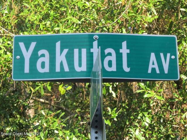 1044 Yakutat Avenue SE, Palm Bay, FL 32909 (MLS #916848) :: Dalton Wade Real Estate Group