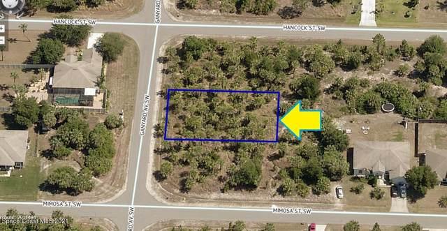 1915 Ganyard Avenue SW, Palm Bay, FL 32908 (MLS #916869) :: Keller Williams Realty Brevard