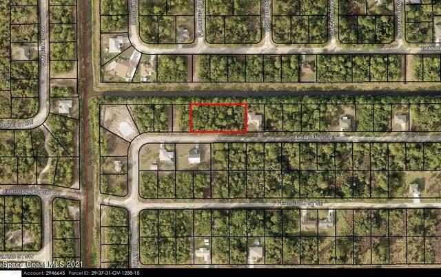 161 Halloran Street SE, Palm Bay, FL 32909 (MLS #916873) :: Blue Marlin Real Estate