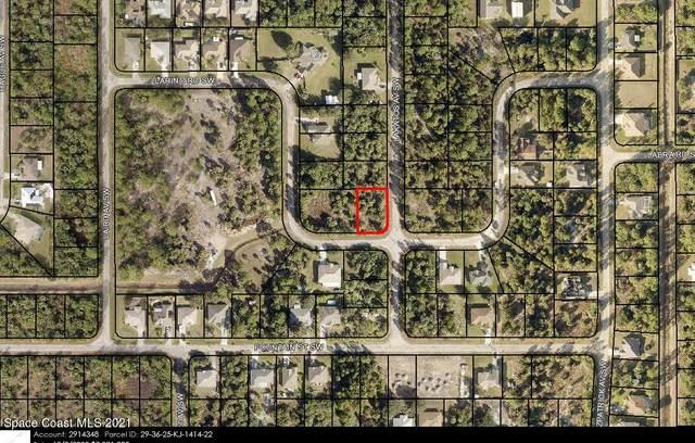 445 Larino Road SW, Palm Bay, FL 32908 (MLS #916879) :: Blue Marlin Real Estate