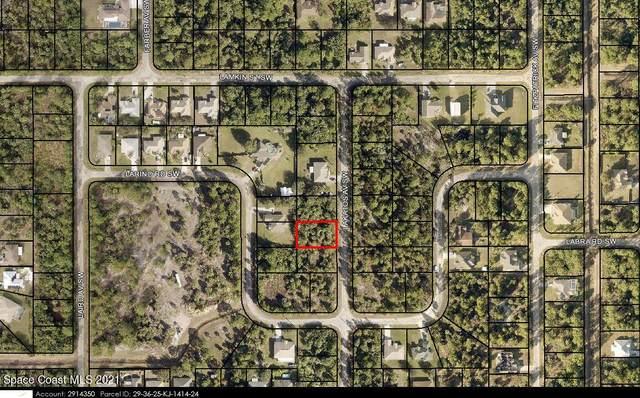 2778 Lakatos Avenue SW, Palm Bay, FL 32908 (MLS #916880) :: Blue Marlin Real Estate