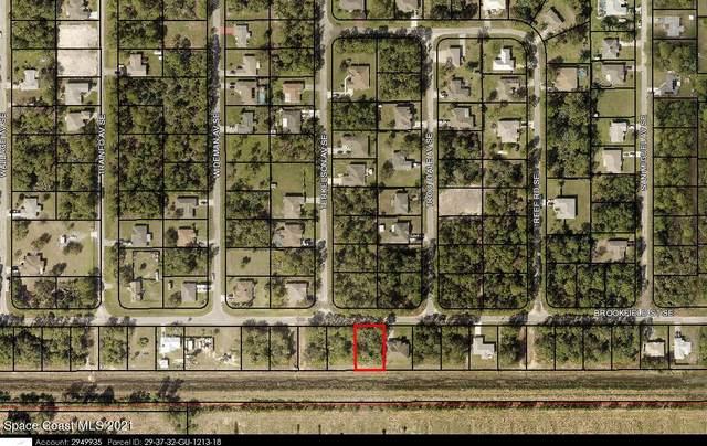 942 Brookfield Street SE, Palm Bay, FL 32909 (MLS #916883) :: Blue Marlin Real Estate