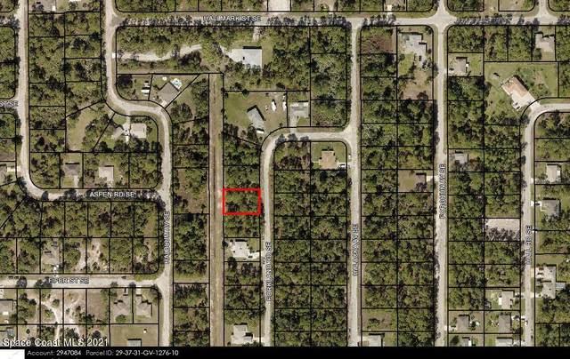3254 Forkland Road SE, Palm Bay, FL 32909 (MLS #916888) :: Blue Marlin Real Estate