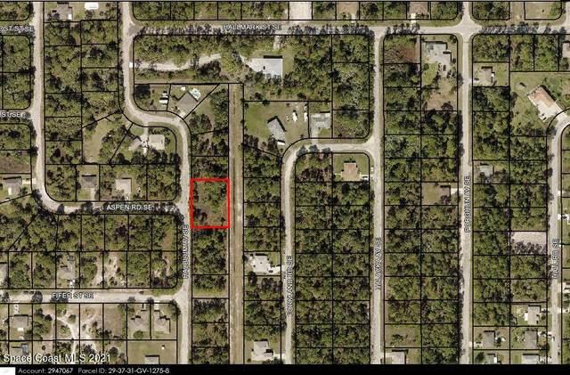 3239 Halblum Avenue SE, Palm Bay, FL 32909 (MLS #916892) :: Blue Marlin Real Estate
