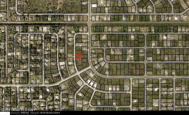 3141 Telesca Road SE, Palm Bay, FL 32909 (MLS #916904) :: Dalton Wade Real Estate Group
