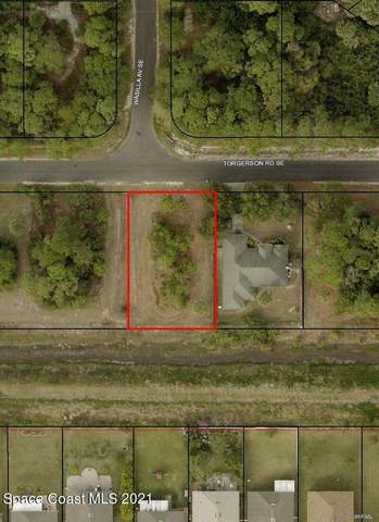 1376 Torgerson Road SE, Palm Bay, FL 32909 (MLS #917360) :: Keller Williams Realty Brevard