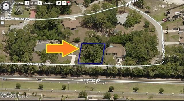 1425 Madison Road NW, Palm Bay, FL 32907 (MLS #917374) :: Keller Williams Realty Brevard