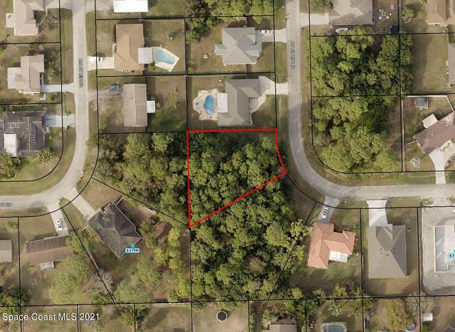 1338 Vater Avenue NW, Palm Bay, FL 32907 (#917466) :: The Reynolds Team | Compass