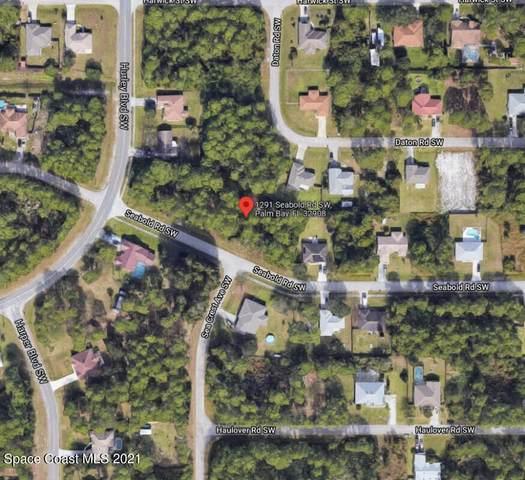 1291 Seabold Road SW, Palm Bay, FL 32908 (MLS #917580) :: Keller Williams Realty Brevard