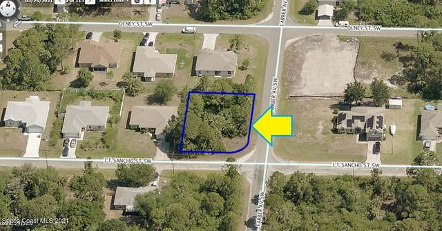 501 J T Sancho Street SW, Palm Bay, FL 32908 (MLS #917606) :: Keller Williams Realty Brevard