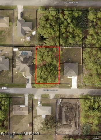 131 Ensenada Street SE, Palm Bay, FL 32909 (MLS #917635) :: Keller Williams Realty Brevard