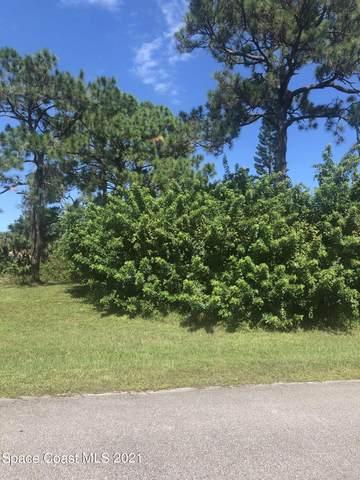 1597 Zaffer Street NW, Palm Bay, FL 32907 (MLS #917897) :: Dalton Wade Real Estate Group