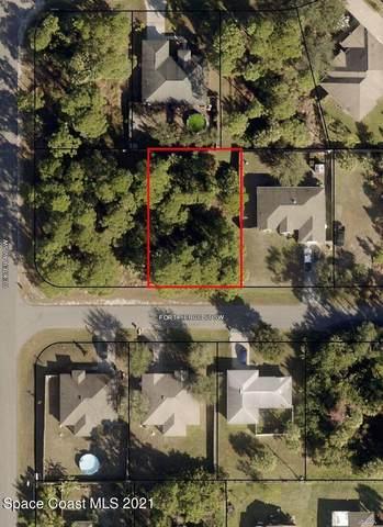 481 Fort Pierce Street SW, Palm Bay, FL 32908 (MLS #917928) :: Keller Williams Realty Brevard