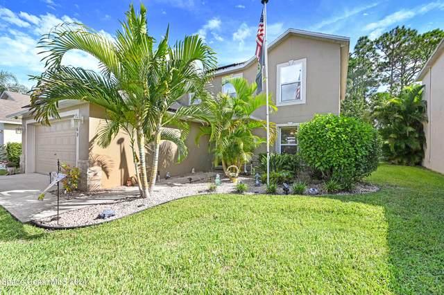 1669 Sawgrass Drive SW, Palm Bay, FL 32908 (MLS #917942) :: Keller Williams Realty Brevard