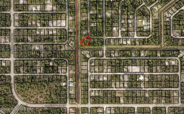 104 Todd Street SE, Palm Bay, FL 32909 (MLS #918119) :: Keller Williams Realty Brevard