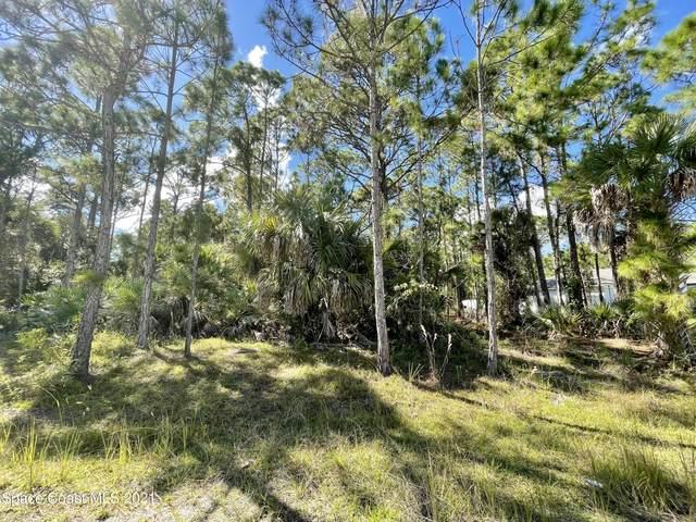 712 Griffin Avenue SW, Palm Bay, FL 32908 (MLS #918258) :: Keller Williams Realty Brevard