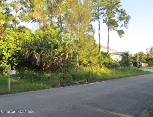 715 Haryestor Avenue SW, Palm Bay, FL 32908 (MLS #918375) :: Engel & Voelkers Melbourne Central