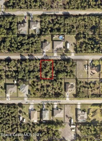 434 Hallcrest Street SW, Palm Bay, FL 32908 (MLS #918462) :: Keller Williams Realty Brevard