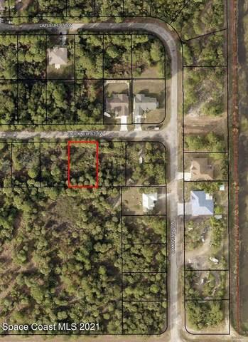 122 Faulkner Street SW, Palm Bay, FL 32908 (MLS #918463) :: Keller Williams Realty Brevard