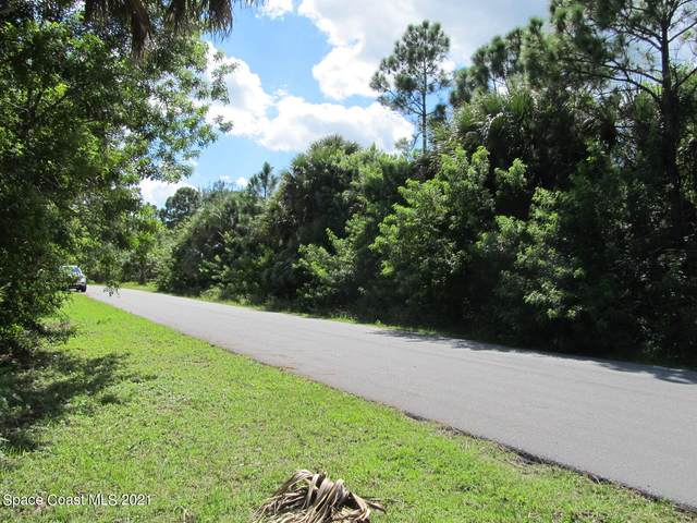 387 Cherry Tree Circle NW, Palm Bay, FL 32907 (MLS #918713) :: Armel Real Estate