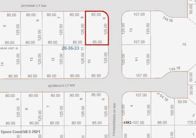 1834 Jayhawk Court NW, Palm Bay, FL 32907 (MLS #918714) :: Dalton Wade Real Estate Group