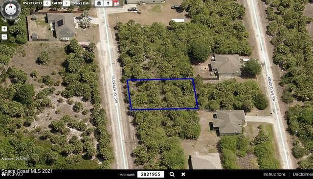 3375 Florala Avenue SW, Palm Bay, FL 32908 (MLS #918944) :: Blue Marlin Real Estate