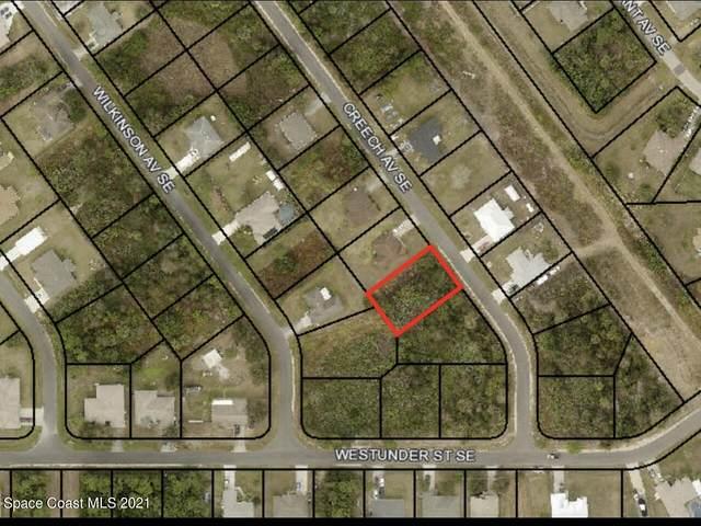 2982 Creech Avenue SE, Palm Bay, FL 32909 (MLS #919021) :: Vacasa Real Estate