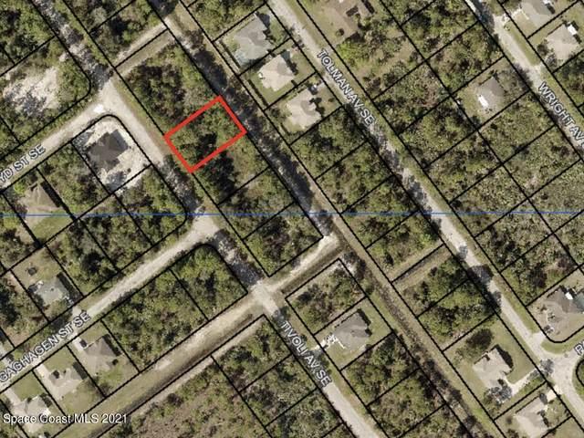 2763 Tivoli Avenue SE, Palm Bay, FL 32909 (MLS #919024) :: Vacasa Real Estate