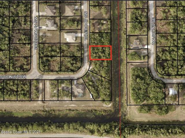 3379 Toledo Avenue, Palm Bay, FL 32908 (MLS #919026) :: Vacasa Real Estate