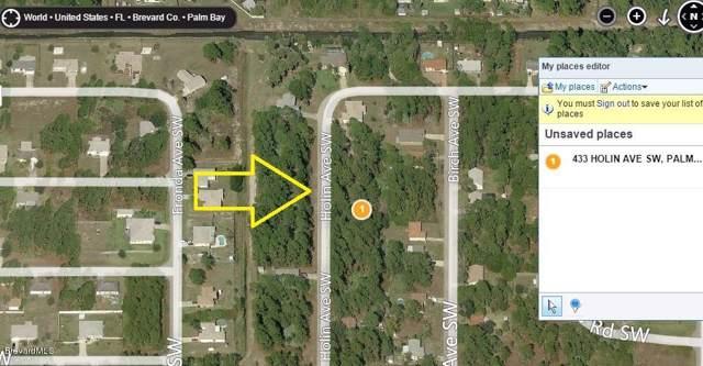 433 SW Holin Avenue SW, Palm Bay, FL 32908 (MLS #746097) :: Armel Real Estate