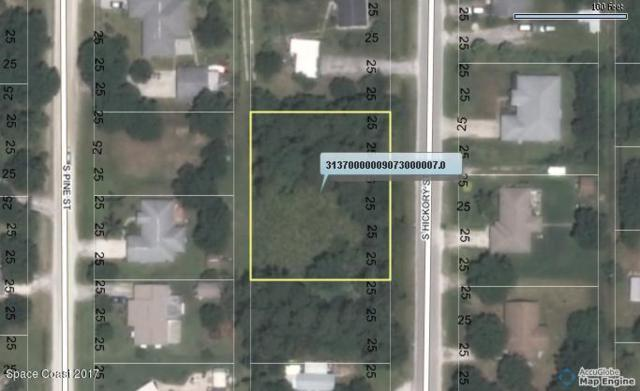 132 S Hickory Street, Fellsmere, FL 32948 (MLS #788417) :: Premium Properties Real Estate Services
