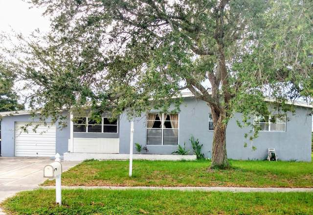 3049 Rowe Street NE, Palm Bay, FL 32905 (MLS #878439) :: Blue Marlin Real Estate