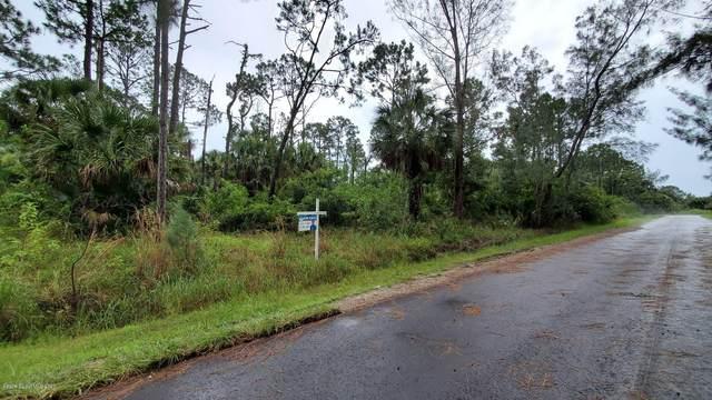 1051 Ganaway Avenue SW, Palm Bay, FL 32908 (MLS #879808) :: Blue Marlin Real Estate