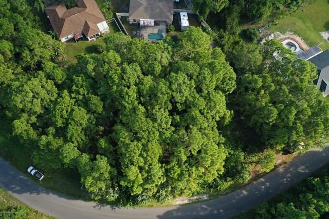 1781 Hydrangea Road NW, Palm Bay, FL 32907 (MLS #887540) :: Blue Marlin Real Estate